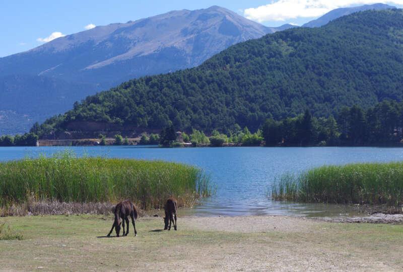 daphnes-hotel-nature-lake-doxa-2